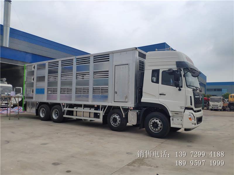 东风天龙拉猪车运猪车价格-东风天龙拉猪车运猪车厂家